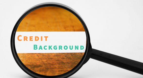 Credit and Background Check